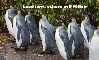 Lead now, others will follow -By ArtSHINE